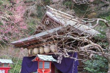 Entrance Egara Tenji Shrine