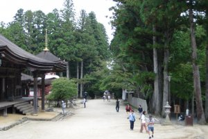 Near Konpon Daito temple in Koyasan's centre