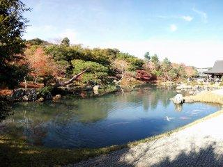 สระน้ำในสวน