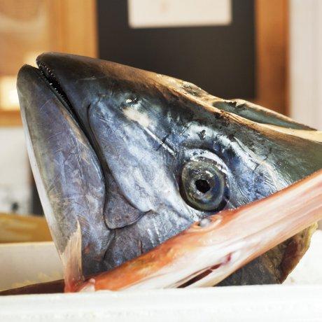 Tsukiji Fish Market in Tokyo [Closed] [Closed]