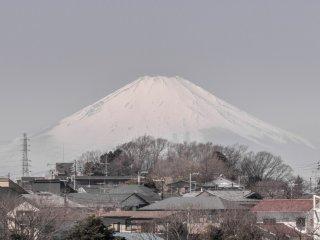Vous pourrez observer le Mont Fuji le long du chemin