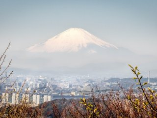 Un dernier regard sur le captivant Mont Fu