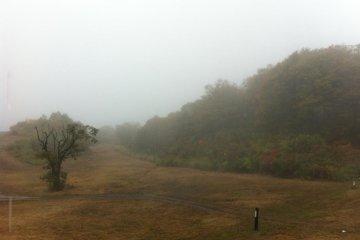 mist over Togari slopes