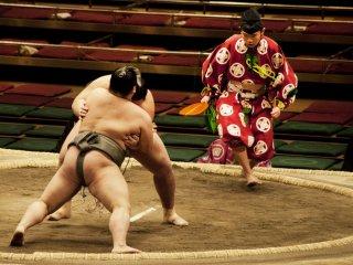 Wasit dalam kostum tradisional harus bergerak cepat untuk memantau aksi para pesumo