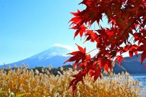 Beautiful views from Kawaguchiko, Yamanashi Prefecture.