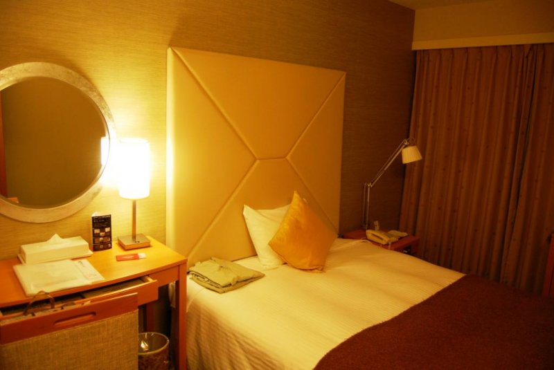 Spacious and comfortable room for a single traveller.