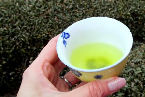 A cup of freshly made green tea invigorates and relaxes at the same time