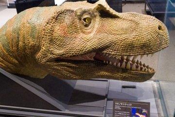Wakinosaurus was native to northern Kyushu