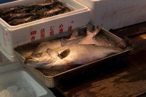 Du poisson frais