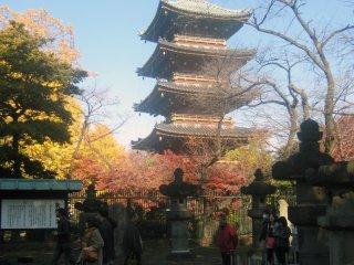 Пятиярусная пагода рядом с храмом Уэно Тосёгу