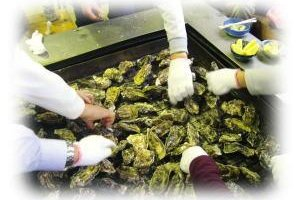 A very relaxed way to eat oysters