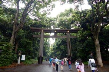 Uma Viagem ao Santuário Meiji