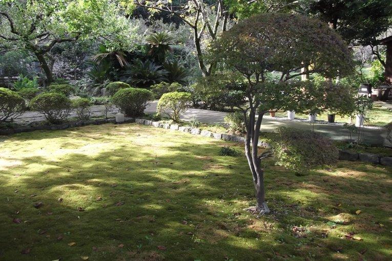 Gyokuden-ji Temple in Odawara