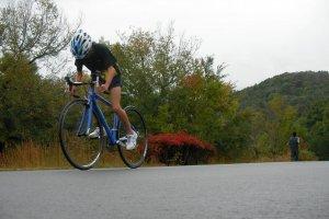 Tuyến đường đạp xe ở công viên rừng Mihara