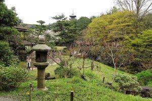 สิ่งที่ฉันโปรดปรานมากที่สุดก็คือ โคมไฟหิน ซึ่งมีอยู่มากมายในสวน