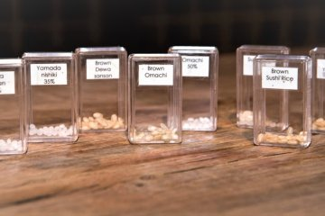 Examples of polished and unpolished rice