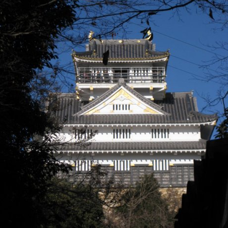 Gifu Castle, Park and Ropeway