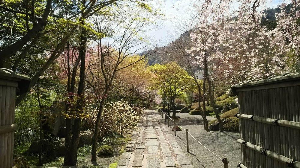 ทางเดินอันงดงามสู่สวนหิน