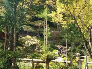 สวนญี่ปุ่นอีกแห่งหนึ่งในวัด พร้อมด้วยห้องสำหรับพิธีชงชา