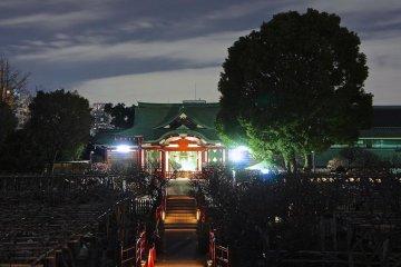 Wonderful Kameido Shrine night scene