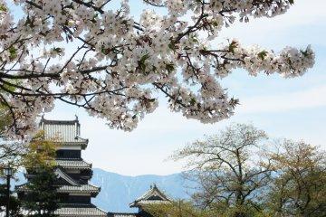 Surroundings of Matsumoto Castle