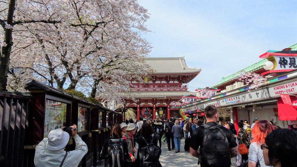 ถนนช้อปปิ้ง 'นะคะมิเสะ' เริ่มจากประตูคะมินะริมอน (Kaminarimon) ของวัดเซ็นโซะจิ และทอดยาวไปจนถึงประตูฟุไร จิน-มอน (furai jin-mon) ซึ่งเป็นประตูชั้นสองของวัด