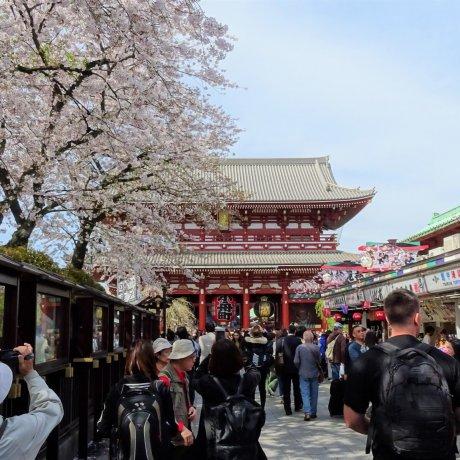 ถนน Nakamise แห่งอะสะกุสะ