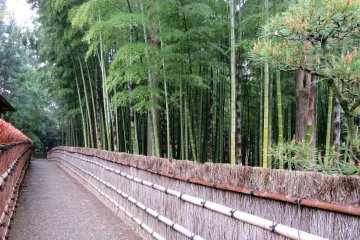 Bamboo grove leads to Kobuntei