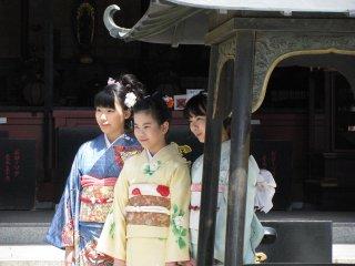 Beautiful girls in spring kimono