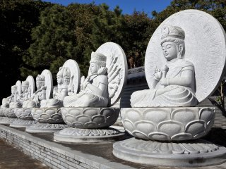 Hundreds of stone Buddha statues fill the compound