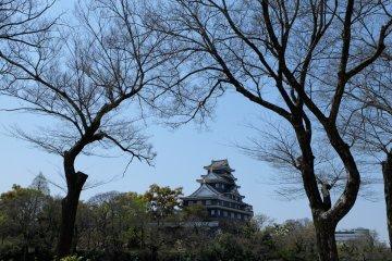 สามารถมองเห็นปราสาทโอคายามาจากสวนได้ด้วย