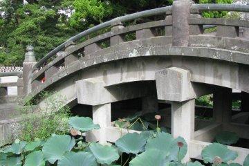 Каменный мост и сад лотосов