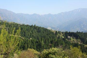 Пейзаж вокруг Магомэ