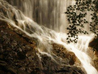 Autumn leaves and Nunobiki Falls