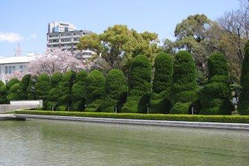 Подстриженные деревья