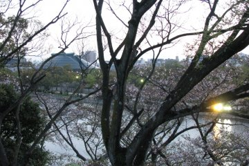 Вид на Зелёную арену Хиросимы