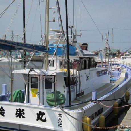 ตกปลาที่โชฟุคุมารุในโอฮาระ