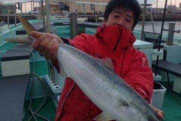 Nice catch