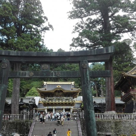 Nikko: Third Time is the Charm