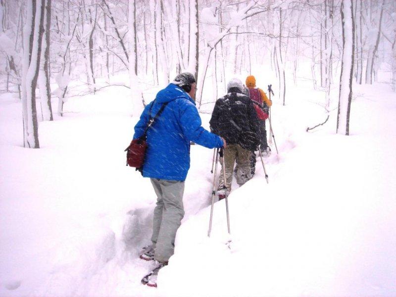 At the beginning of the snowshoe trek