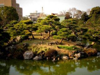 연못 한 개, 섬 여러 개가 있는 정원