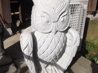 One of the owl statues