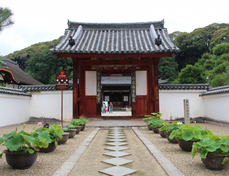 The Hidden Treasures of Japan