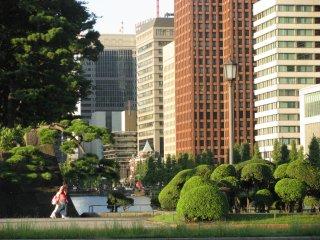 Станция Токио. В десяти минутах ходьбы находится резиденция Императора и Имперские сады