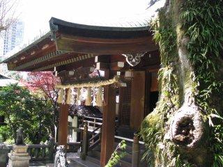 Синтоистский храм в парке Уэно