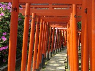 Синтоистский храм Нэзу посвящён Инари - одному из главных божеств в Японии