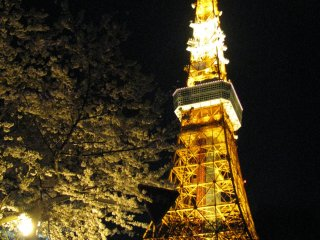 Токийская башня вечером