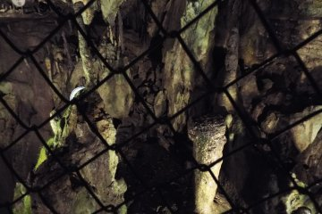 Nippara Shonyudo - stalactites protected from human touch