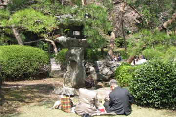 Пикник в парке Синдзюку гёэн