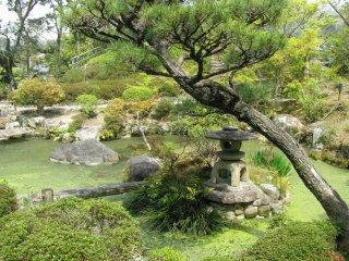 Традиционный японский сад в Наре
